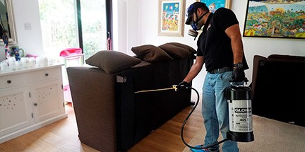 Technician performs second treatment for bed bugs