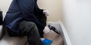 Pest technician performs rat proofing