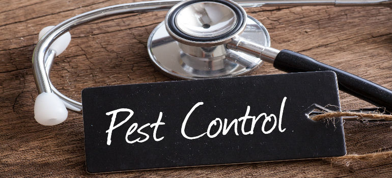 Pest Control When Renting